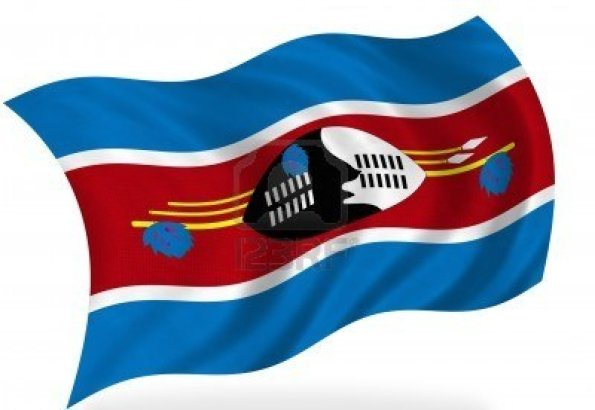 7928489-swaziland-flag-isolated