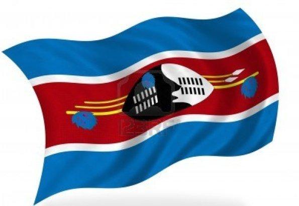 7928489-swaziland-flag-isolated