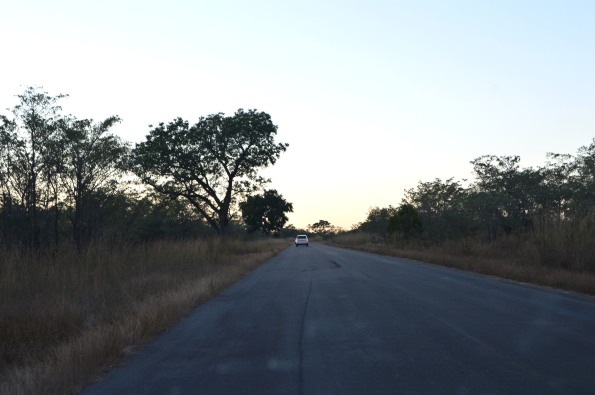 Kruger Park, finally!
