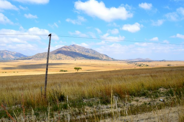 Perfect South African countryside