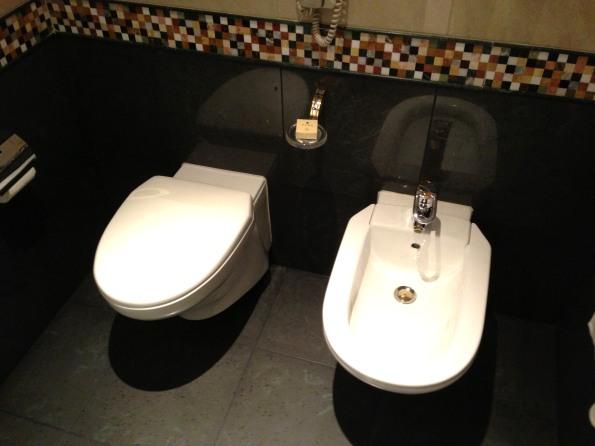 Toilet and bidet!