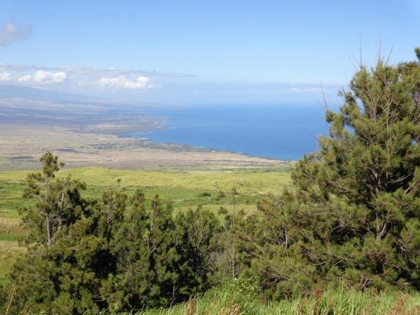 View on the way to Waimea